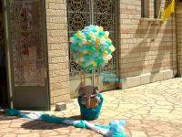 Αερόστατο με καλάθι