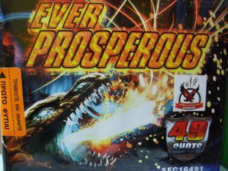 Ever Prosperous 49 Βολές